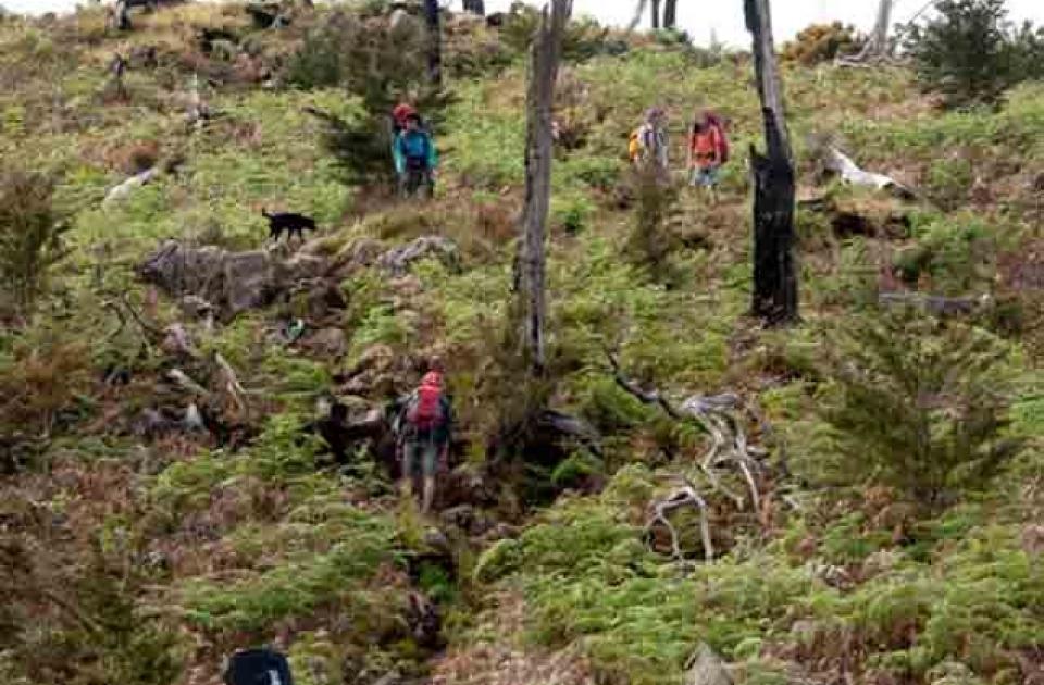 Jalur pendakian menuju pos 6 gunung Bawakaraeng