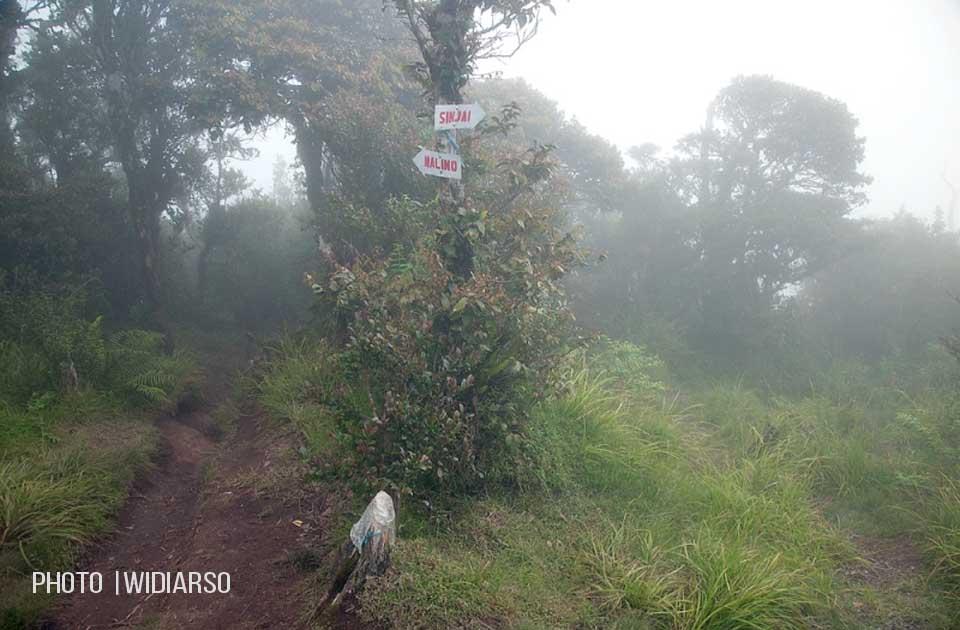 Persimpangan jalur Sinjai dan Malino