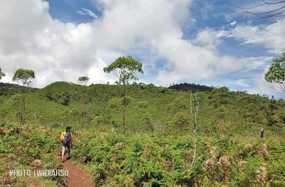Jalur menuju lembah Ramma Gunung Bawakaraeng